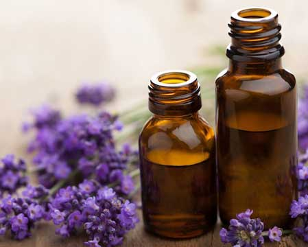 A Look At Lavender Essential Oil