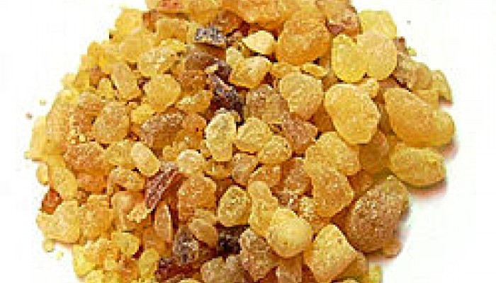 The Power of Frankincense Essential Oils